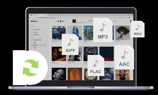 Netflix Video Downloader | Spotify Music Converter
